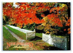Postcard Autumn in New England white fence ME NH VT NES22 K3