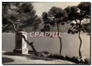 Modern Postcard The French Riviera Menton Study Pins and old fountain in Cap ...