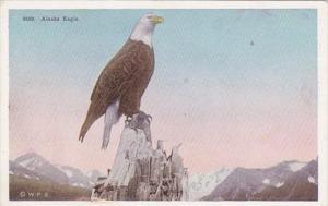 Alaska American Eagle