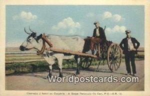 Charrette a boeuf, Peninsula Ox Cart Gaspe, PQ Canada Unused