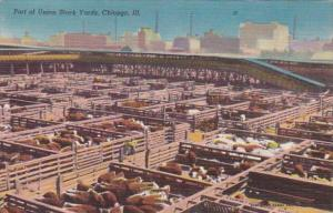 Illinois Chicago Part Of The Union Stock Yards