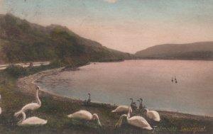 FALMOUTH, Cornwall, England, 1913 ; Swanpool