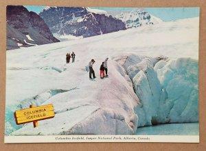 Columbia Icefield, Jasper National Park, Alberta, Canada Postcard
