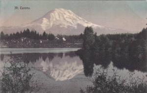 Scenic view,  Mt. Tacoma,  Tacoma,  Washington,  00-10s