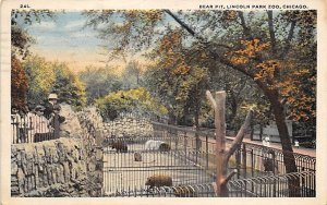 Bear Post Card Bear Pit Lincoln Park Zoo, Chicago, IL, USA 1918