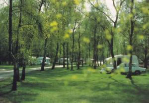 Sandringham Caravan Club Camping Site Norfolk Postcard