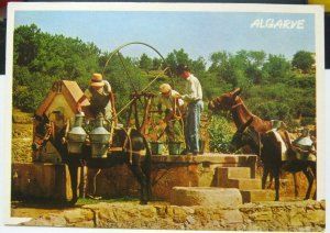 Portugal Algarve water well donkeys - posted