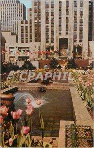 Postcard Modern New York City The Rockefeller Center Channel Gardens