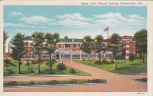 MARTINSVILLE, Indiana, 1930-1940's; Home Lawn Mineral Springs