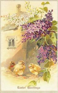 EASTER GREETINGS c1906 Postcard Lilacs Three Chicks by Tucks