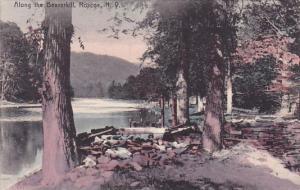 Along The Beaverkill Roscoe New York 1908