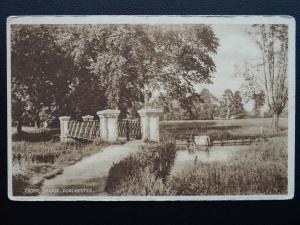 DORCHESTER Frome Bridge shows Cattle in River c1930s Postcard by E.A. Riglar