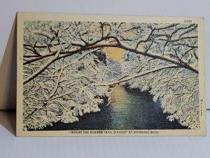 Vintage Postcard Where The Summer Trail Divides Standish Michigan Linen  660