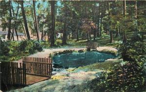 Holly Springs Pennsylvania~Holly Park Pond~Rustic Foot Bridge~1911 Postcard