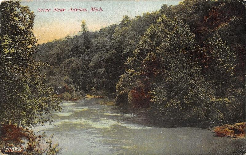Adrian Michigan~Raisin River Scene in Forest Area~c1910 Postcard