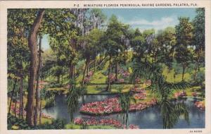 Florida Palatka Miniature Florida Peninsule Ravine Gardens