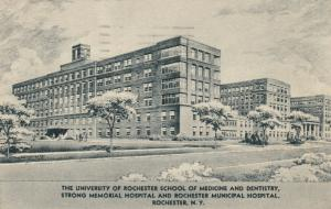 ROCHESTER, New York, 1942 ; School of Medicine