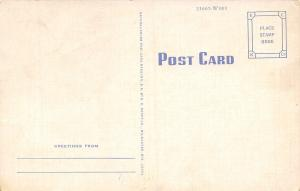 Guess Where I am? Busy Person Correspondence Postcard~Out House~1940s Linen PC