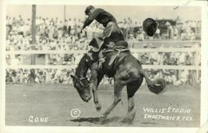 Sweetwater, Texas, Bronc Riding, Rodeo (1930s) Willis Studio RPPC (1)