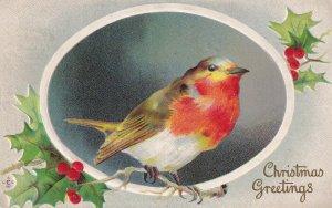CHRISTMAS, 1900-1910s; Christmas Greetings, Bird