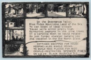 Postcard NC Black Mountain Spencer Pines Cottages Swannanoa Valley c1920s S12