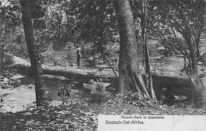 German East Africa Tanzania D.O. Afrika Mombo-Bach in Usambara, Postcard
