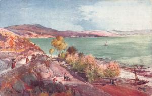 The Lake of Galilee, The Holy Land, Palestine, Early Tuck's Postcard, Unused