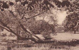 TUCK: HASELEY, Warwickshire, England, United Kingdom; Haseley Hall, 00-10s
