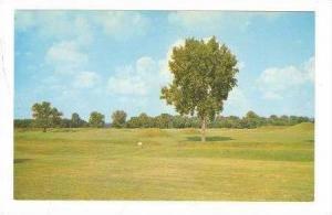 Indian Mound City Group, Chillicothe, Ohio, 40-60s