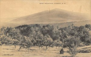 Conway New Hampshire~Moat Mountain From Downhill Valley~1908 B&W Posfcard