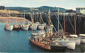 Scallop Boats at Digby Wharf Nova Scotia NS Canada