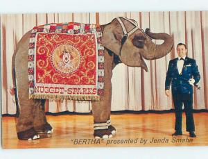Pre-1980 ELEPHANT PERFORMER AT NUGGET CASINO HOTEL Sparks - East Reno NV B0635