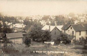 G42/ East Palestine Ohio RPPC Postcard c1910 Birdseye View Homes