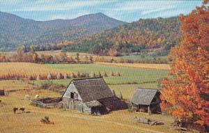 Blueridge Valley Northeast Georgia
