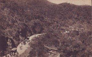 Ceylon Old Postcard - Nanu Oya Pass and Black Pool