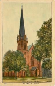 Grand Rapids Michigan~Steeple Tower Over Trees @ St Mary's Church 1910