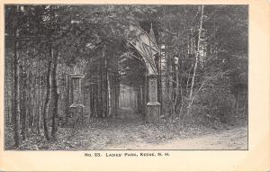 Keene NH~Ladies Park~Greenery Swamps Arch Entry~Leaves on Path 1906 PC