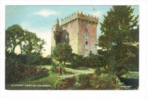 Blarney Castle, Co. Cork., Ireland, 00-10s