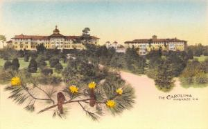 Pinehurst NC~Carolina Hotel Panorma~Flowering Yellow Pine Cones~1920s Handcolor