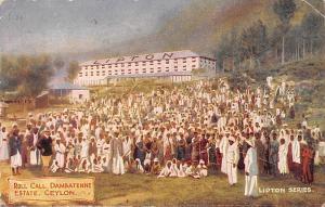 Ceylon, Sri Lanka, Roll Call. Dambatenne Estate, Lipton Series 1908