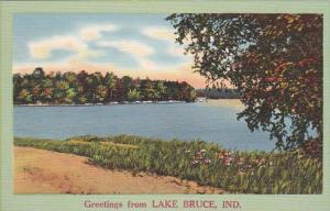 Indiana Greetings From Lake Bruce