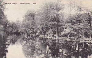 Connecticut New Canaan Silvermine Stream Albertype