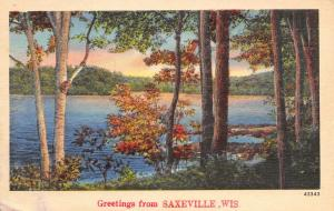 Saxeville Wisconsin~View Across Lake~Lovely: We Are Enjoying it~1947 Linen PC