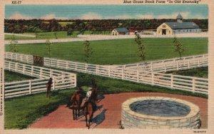 Vintage Postcard 1930's Blue Grass Stock Farm In Old Kentucky KY
