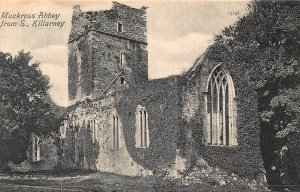 Muckross Abbey from S. Killarney Postcard