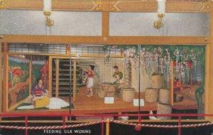CHICAGO's 1933 International Expo., Feeding the Silk Worms