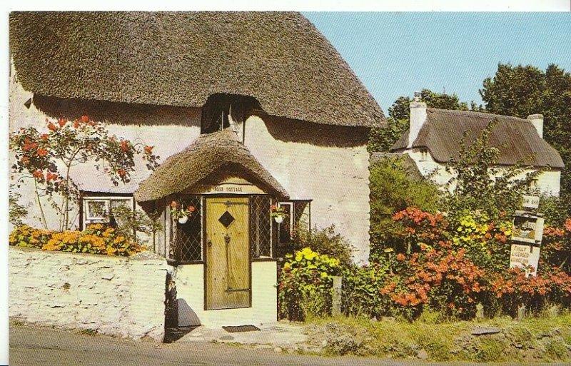 Devon Postcard - Cottages at Maidencombe - Torquay   U1420