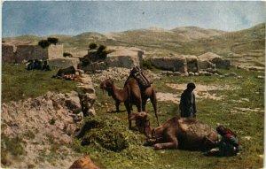 PC CPA ARABIAN TYPES AND SCENES, FELLACHENDORF, Vintage Postcard (b17379)