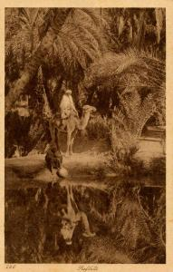 Egypt - Reflection of Travelers at Oasis