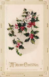 A Merry CHRISTMAS, 1900-1910s; Holly Branch